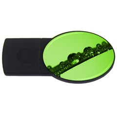 Green Drops 2gb Usb Flash Drive (oval)