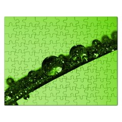 Green Drops Jigsaw Puzzle (Rectangle)