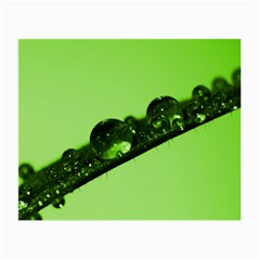 Green Drops Glasses Cloth (Small)