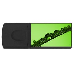 Green Drops 4GB USB Flash Drive (Rectangle)
