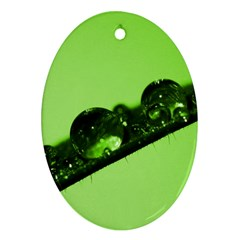 Green Drops Oval Ornament (Two Sides)