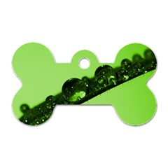 Green Drops Dog Tag Bone (Two Sided)