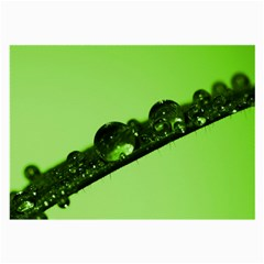 Green Drops Glasses Cloth (Large, Two Sided)