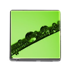 Green Drops Memory Card Reader with Storage (Square)