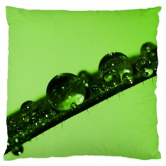 Green Drops Large Cushion Case (single Sided)