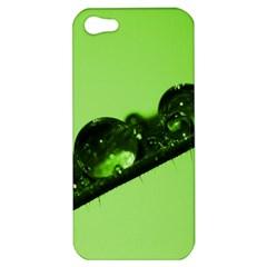 Green Drops Apple iPhone 5 Hardshell Case