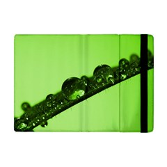 Green Drops Apple iPad Mini Flip Case