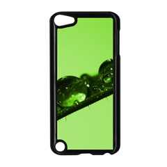 Green Drops Apple Ipod Touch 5 Case (black)