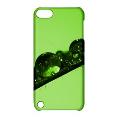 Green Drops Apple iPod Touch 5 Hardshell Case with Stand