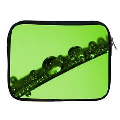 Green Drops Apple iPad 2/3/4 Zipper Case