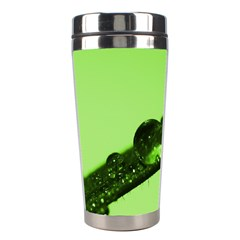 Green Drops Stainless Steel Travel Tumbler
