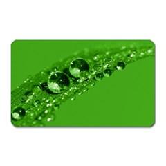 Green Drops Magnet (rectangular)
