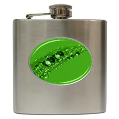 Green Drops Hip Flask