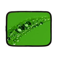 Green Drops Netbook Case (small)