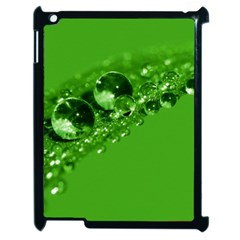 Green Drops Apple iPad 2 Case (Black)