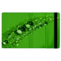 Green Drops Apple iPad 3/4 Flip Case