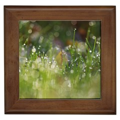 Drops Framed Ceramic Tile