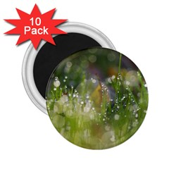 Drops 2.25  Button Magnet (10 pack)