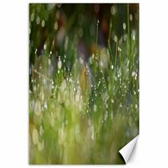Drops Canvas 12  X 18  (unframed)