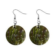 Waterdrops Mini Button Earrings