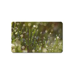 Waterdrops Magnet (Name Card)