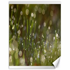 Waterdrops Canvas 18  x 24  (Unframed)