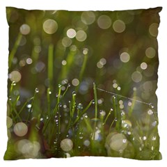 Waterdrops Large Cushion Case (two Sided)