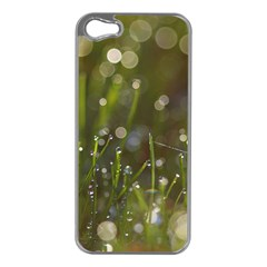 Waterdrops Apple iPhone 5 Case (Silver)