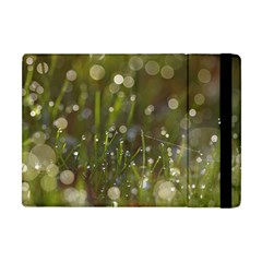 Waterdrops Apple Ipad Mini Flip Case