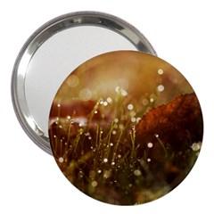 Waterdrops 3  Handbag Mirror