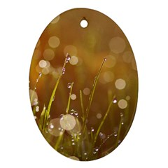 Waterdrops Oval Ornament
