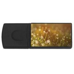 Waterdrops 1GB USB Flash Drive (Rectangle)