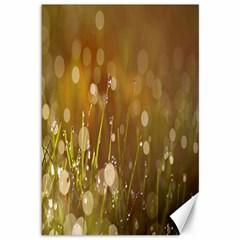 Waterdrops Canvas 12  x 18  (Unframed)