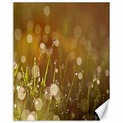 Waterdrops Canvas 11  X 14  (unframed)