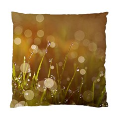 Waterdrops Cushion Case (Two Sided)