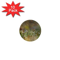 Sundrops 1  Mini Button Magnet (10 Pack)