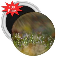 Sundrops 3  Button Magnet (100 pack)