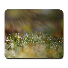Sundrops Large Mouse Pad (Rectangle)