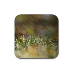 Sundrops Drink Coaster (square)