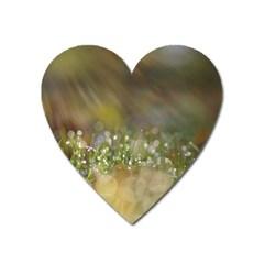 Sundrops Magnet (Heart)