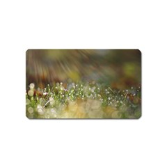 Sundrops Magnet (Name Card)