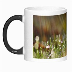Sundrops Morph Mug