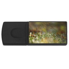 Sundrops 4GB USB Flash Drive (Rectangle)