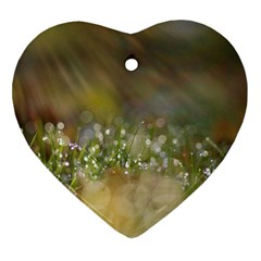 Sundrops Heart Ornament (Two Sides)