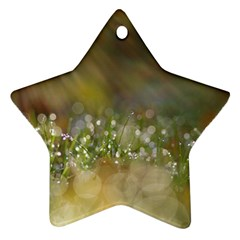 Sundrops Star Ornament (Two Sides)