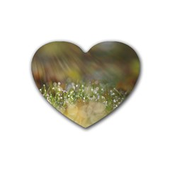 Sundrops Drink Coasters 4 Pack (heart)