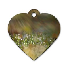 Sundrops Dog Tag Heart (one Sided)