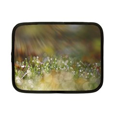 Sundrops Netbook Case (Small)