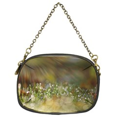 Sundrops Chain Purse (One Side)