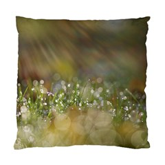 Sundrops Cushion Case (Two Sided)
